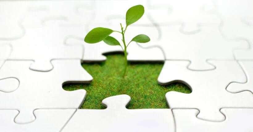 apoio empreendedorismo REWARD Consulting